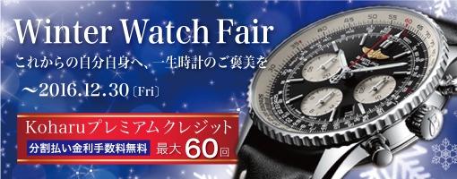 Winter Watch Fair