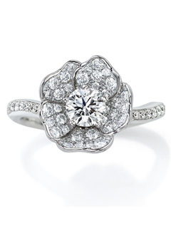 White Rose-ホワイトローズ-